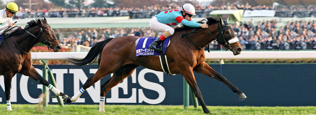 Almond Eye winning the Japan Cup